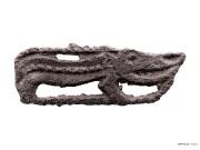5 Ящер-гибрид